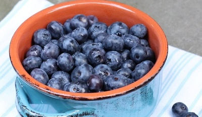 Gut-Friendly Blueberry Probiotic Smoothie