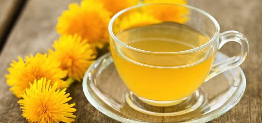 Where to get dandelion tea