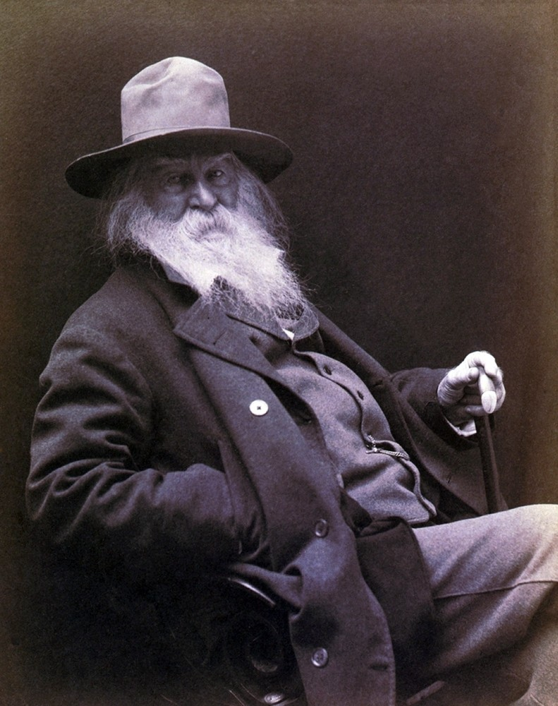 Walt whitman the centennial essays