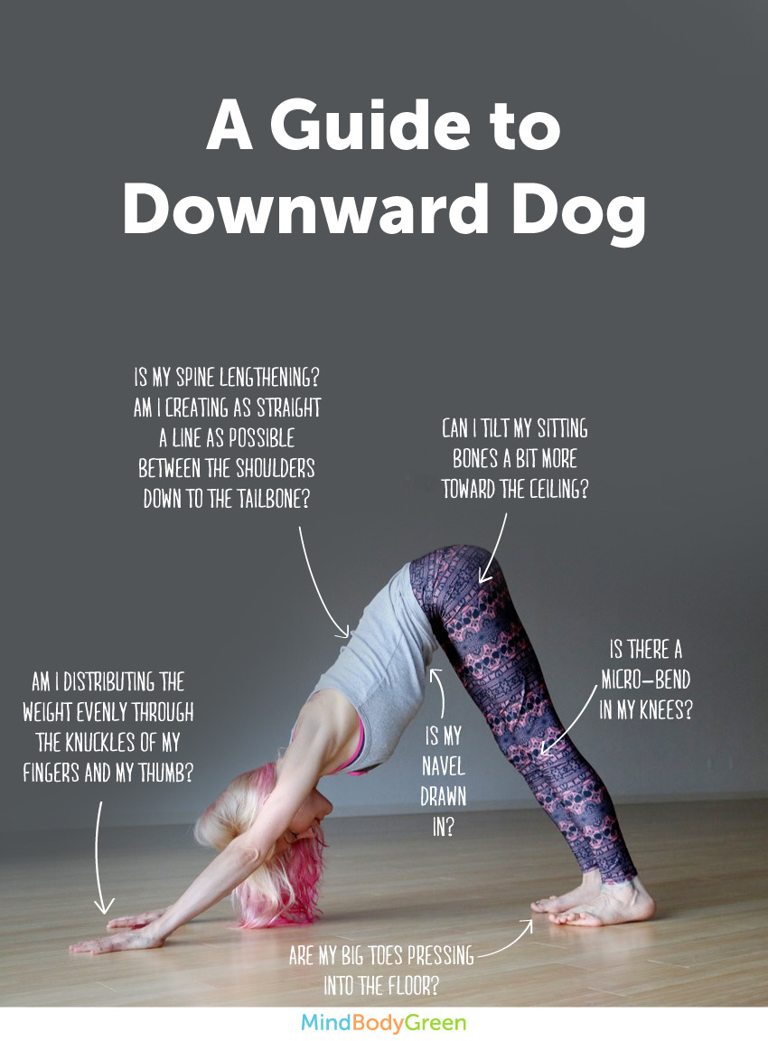 I Can T Do Downward Dog